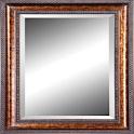 Pocket Mirror Pro logo
