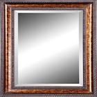 Pocket Mirror Pro icon