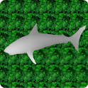 Stereogram Riddle icon