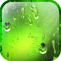 Nexus After Rain icon