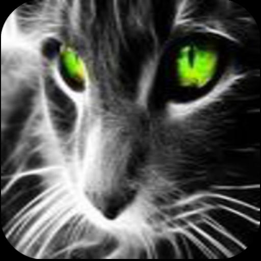 动物壁纸 個人化 App LOGO-硬是要APP