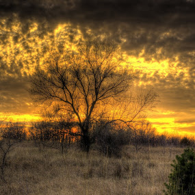 Sky on fire by Chris Clay - Landscapes Sunsets & Sunrises ( omaha, hdr, sunset )