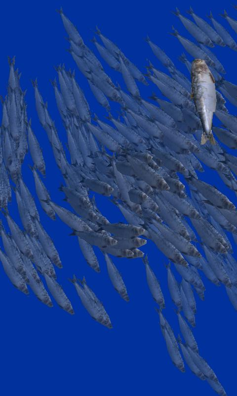Fish swarm Live Wallpaper FREE - screenshot