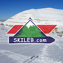 Skiing in Lebanon icon