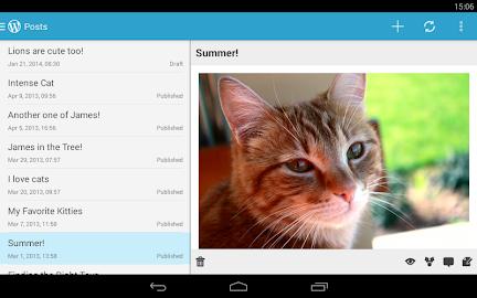 WordPress Screenshot 28