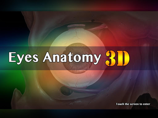 Eyes Anatomy 3D