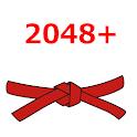 2048 Plus Pro icon