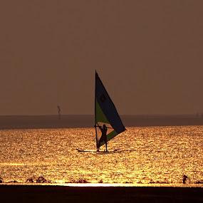 Golden Reflection  by Chobi Wala - Landscapes Sunsets & Sunrises ( #reflection, #golden, #sea, #sunset, #surfing,  )
