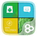 Color Box Live Theme (Green) icon