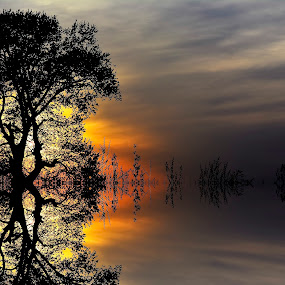 mirror sunset, Comana, Romania by Sorin Lazar Photography - Uncategorized All Uncategorized