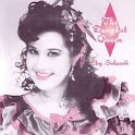Lagu Elvy Sukaesih icon