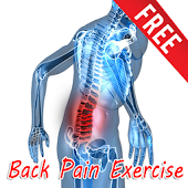 Back Pain Exercise Free Apps