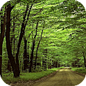 Green Scenery LWP logo