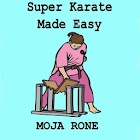 Super Karate Made Easy icon