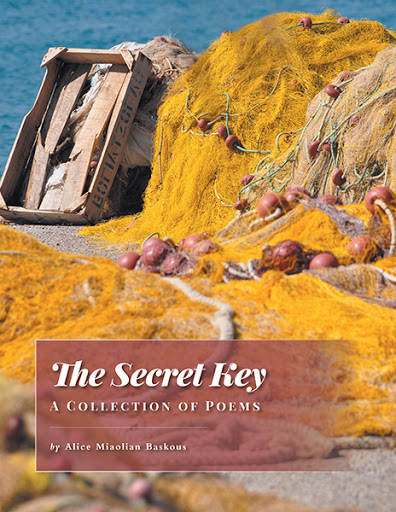 The Secret Key cover