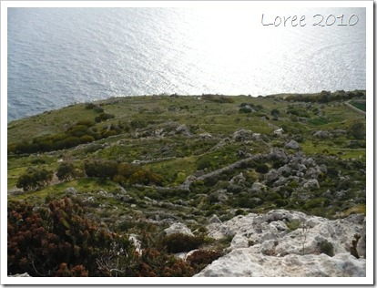 Dingli Cliffs (13)