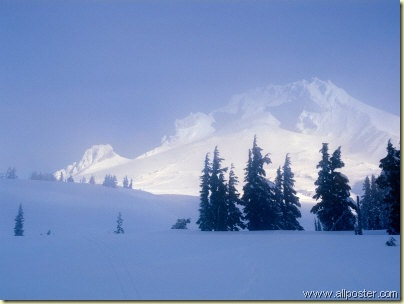 Snowy Day - Mt. Hood