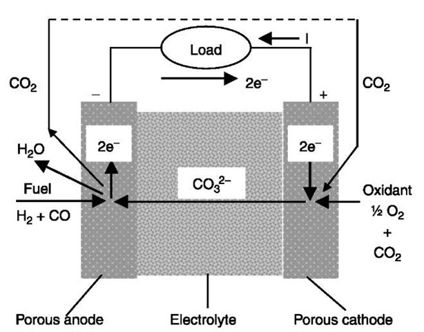 Fuel Cells: Intermediate and High Temperature (Energy Engineering)