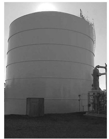 Liquefied Natural Gas (LNG) (Energy Engineering)