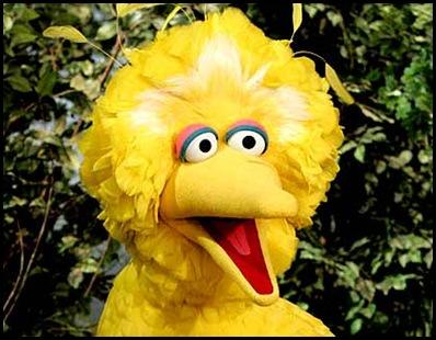 sesame-street-big-bird