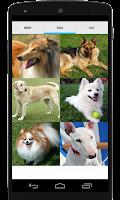 Screenshot of Animal Sounds (Bird,Dog,Cat)