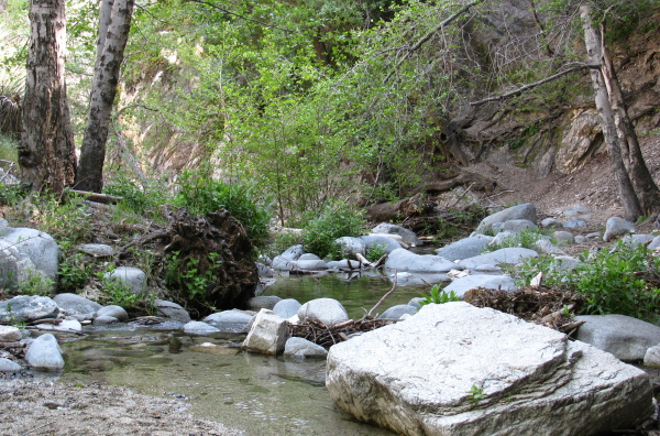 Another look at the creek.
