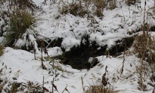 A trickle of water still flows, breaking a hole in the snow.