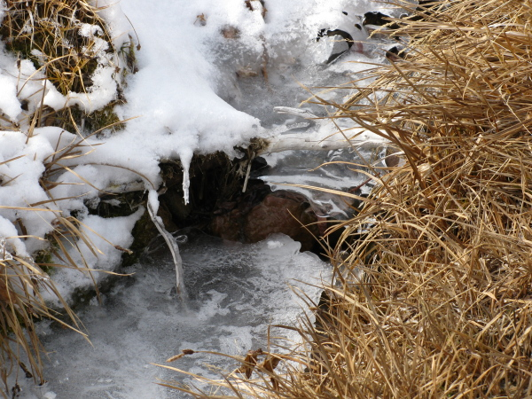 Some ice structures with water underneath.