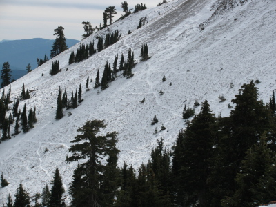 Animal paths marked out in snow on the mountain side.