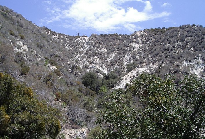 The slopes along the canyon.