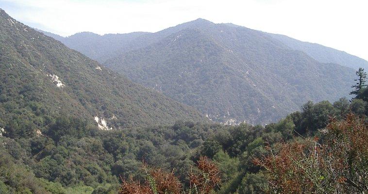 Southeast view.