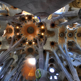 The Roof, Sagrada Familia by Prajwal Ullal - Buildings & Architecture Places of Worship ( roof, hdr, church, sagrada familia, barcelona, , Architecture, Ceilings, Ceiling, Buildings, Building )