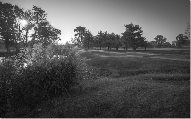 One of the difficult aspects of shooting a golf course in black and white is providing context and scale our mental image of a golf course includes lots of