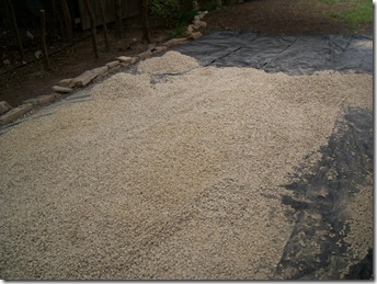 crushed limestone 002