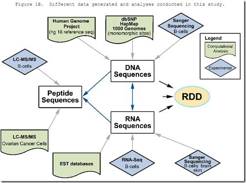 DNA-RNA-differences