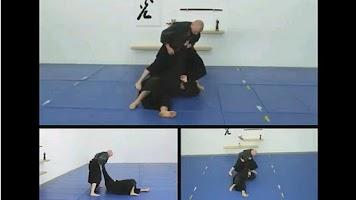 Screenshot of Ninjutsu Striking