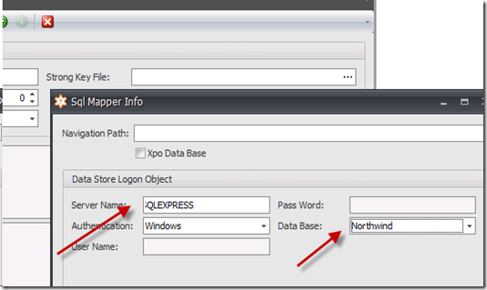 ERP to XAF connection on the fly part1