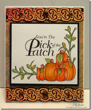pick of the patch card-500
