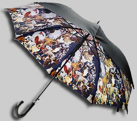 Ted-Baker-umbrella