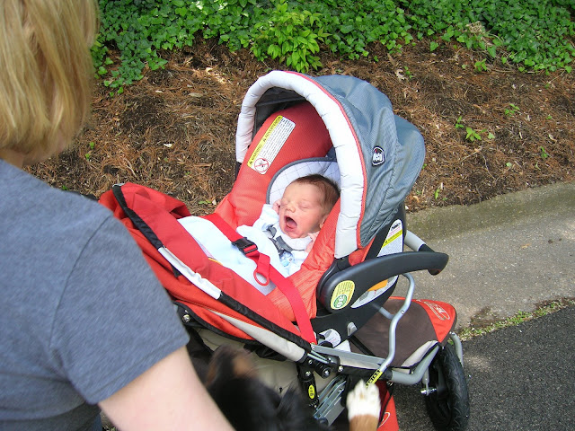 BOB stroller & Chicco carseat ??? - BabyCenter