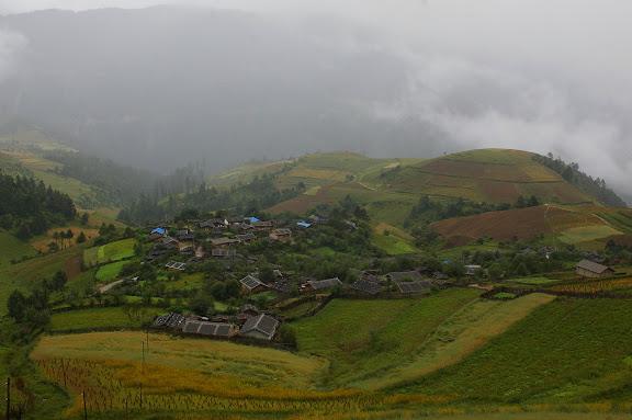 Au Sud de Shangri-la (Zhongdian), altitude : 3200 m. 22 août 2010. Photo : J.-M. Gayman