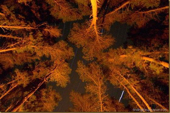 Stars twirling at night - Western Australia - Australia