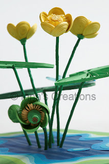 Quilled Nuphar fruit