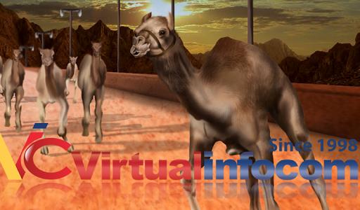 Camel race 3D