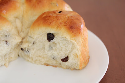 close-up photo of the interior of a raisin roll