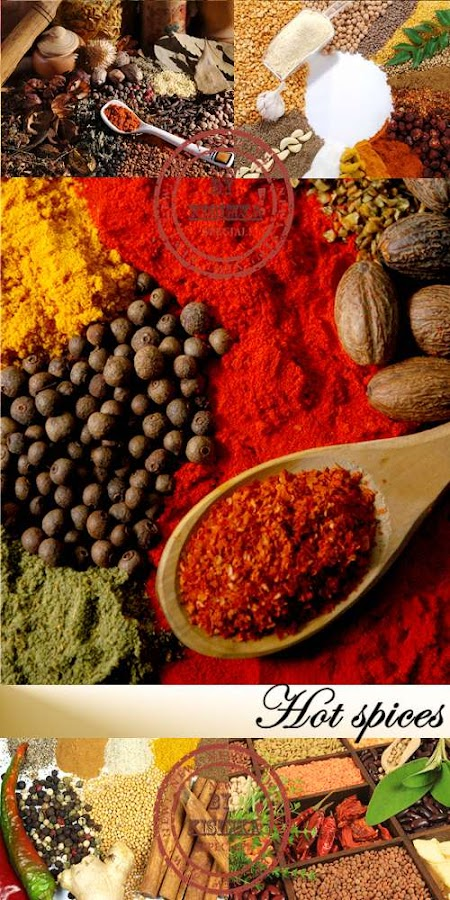Stock Photo: Hot Spices