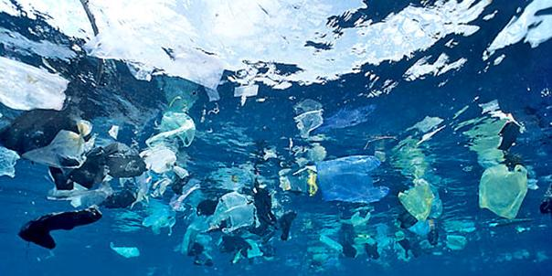 El plastico y el mar