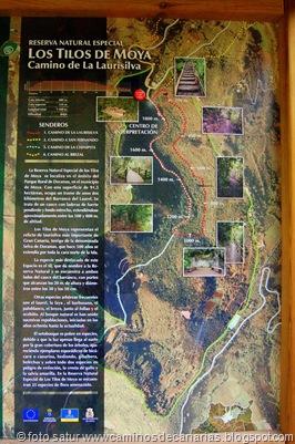 1376 Camino de la Laurisilva