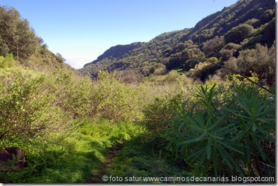 2334 Barranco Cernícalos