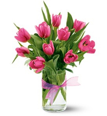 Hot%20Pink%20Tulips